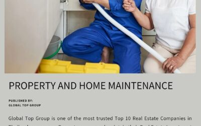 Property and Home Maintenance